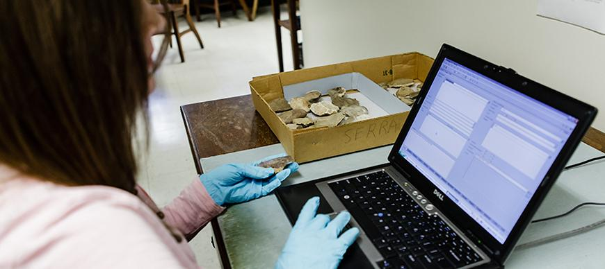 Registrar Susan Allison inputs data about an object into the Oriental Institute's Integrated Database
