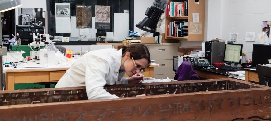 Fig. 3. Conservator Simona Cristanetti examining the coffin within the Oriental Institute's conservation laboratory. Photo Anna Ressman.