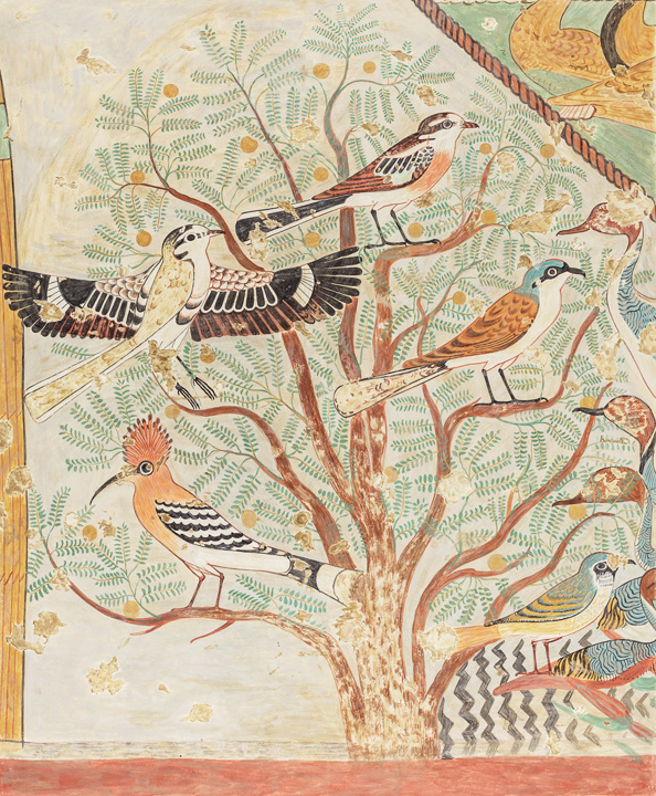 Between Heaven and Earth: Birds in Ancient Egypt | The